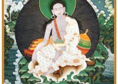 The mountain Yogi मिला रेपा : विशेष जानकारी